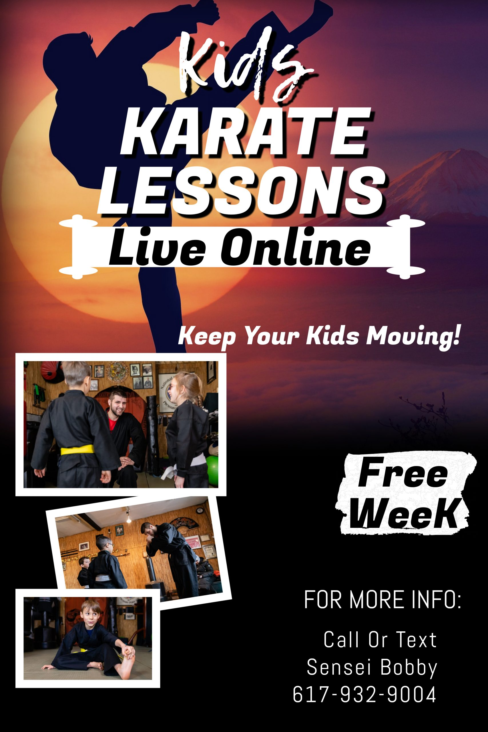 Kids Online Karate classes